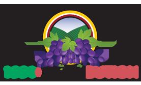 logo-1991distribution-sfondo-bianco